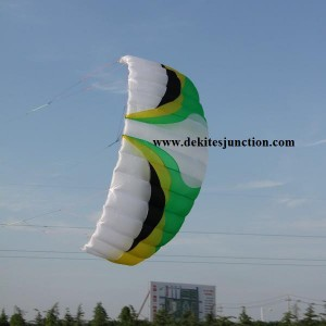 PRO 3M2 QUAD 4 LINES DE POWER STUNT KITEBORADING BUGGYING ALBATROSS KITES *RTF*
