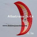 New 5.5M2 power kite traction kite with lines and control handles